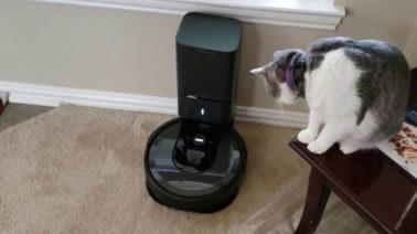máy hút bụi cho thú cưng